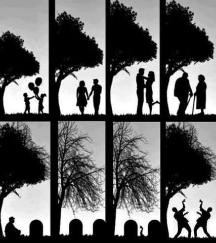 Il ciclo della vita...