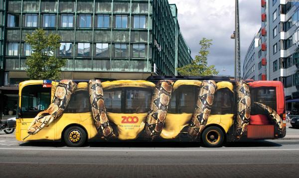 Autobus Anaconda...