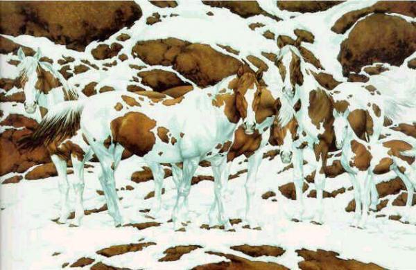 Illusione ottica - Quanti cavalli vedi in questa foto?