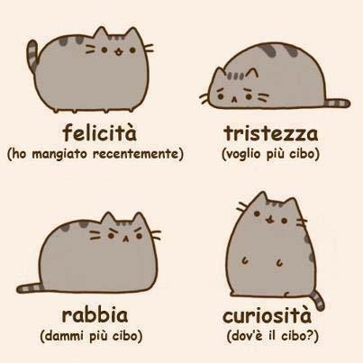 Stati d'animo dei gatti...