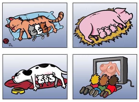 Analogie...
