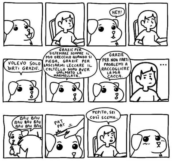 Dediche canine...