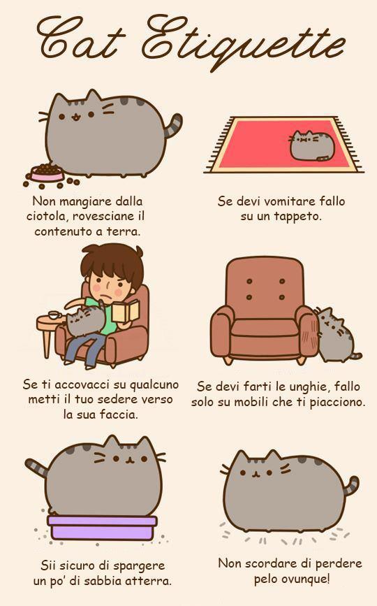 Galateo dei gatti...