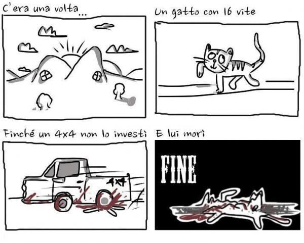La storia del gatto con 16 vite...