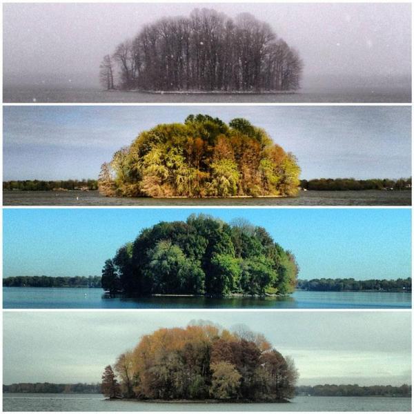 Le 4 stagioni...