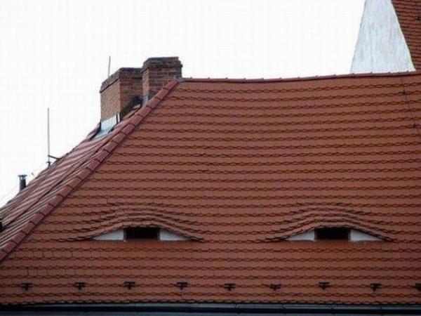 Vicini spioni...