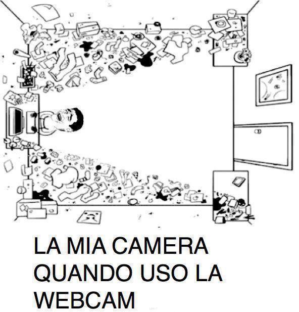 Videoconferenze domestiche...