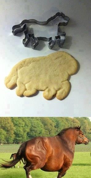 Il cavallo della formina...