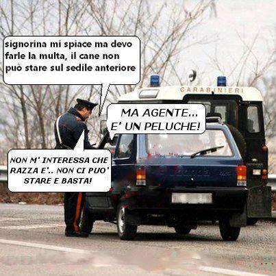 Il rigoroso rispetto della legge...