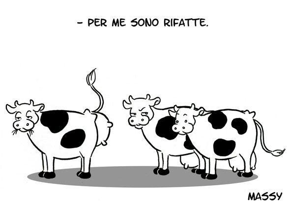 Invidie bovine...