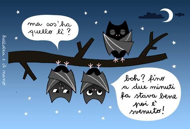 Vita da pipistrelli...