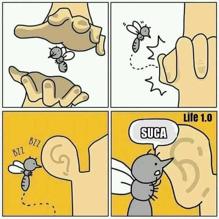 Zanzare...